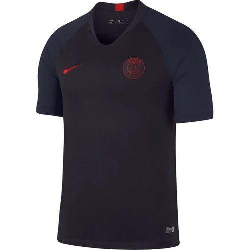 Nike PSG Breathe Jsy Strike Oil grey-red
