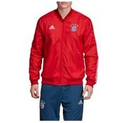 Adidas Bayern Munchen Anthem Jacket
