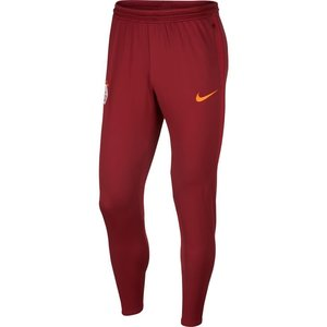 Nike Galatasaray Strk Pant 19/20 Dark red