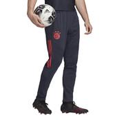 Adidas Bayern EU Training Pant 19/20