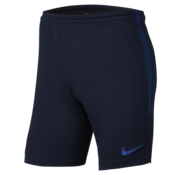 Nike Chelsea Strike Short 19/20