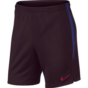 Nike FC Barcelona Strike Short 19/20 Bg/Navy