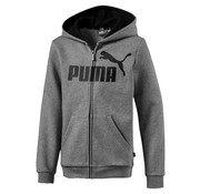 Puma Ess Hood Boys Gray