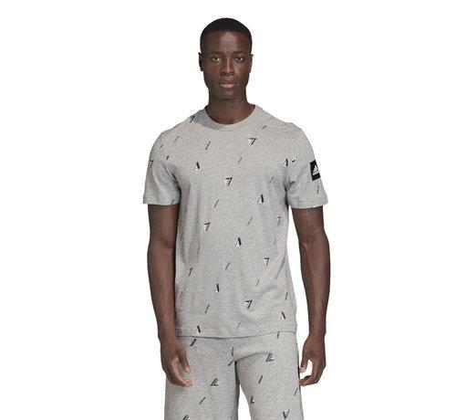 Adidas Graphic Tee Grey