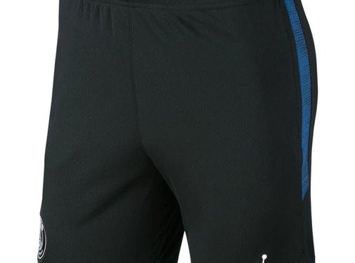 Nike Psg Jordan Nk Dry Strk Short 19-20.