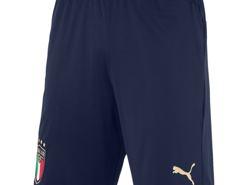 Puma Italia Training Shorts Zip Euro20