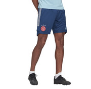 Adidas Ajax Training Short Blue 20/21
