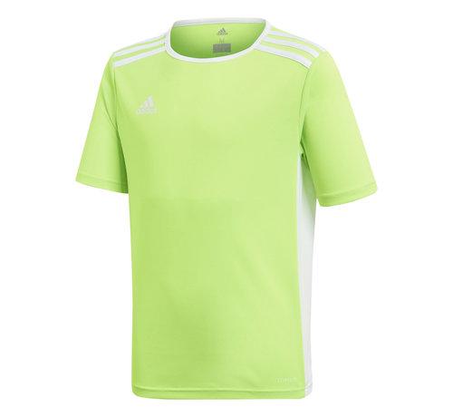 Adidas Entrada 18 Jersey Green Kids