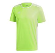 Adidas Entrada 18 Jersey Green