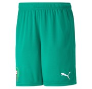 Puma Marocco Home Short