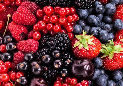 Fruit planten