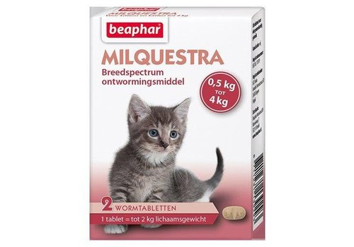 Milquestra kleine kat/kitten - 2 st