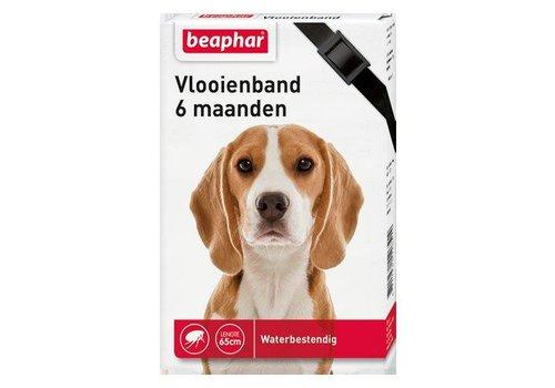 Beaphar Vlooienband hond - zwart 1st