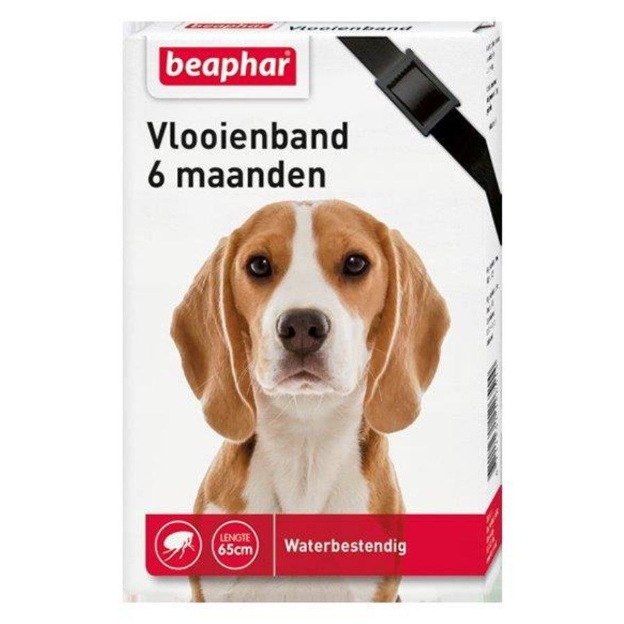 Beaphar Vlooienband hond zwart 1st-1