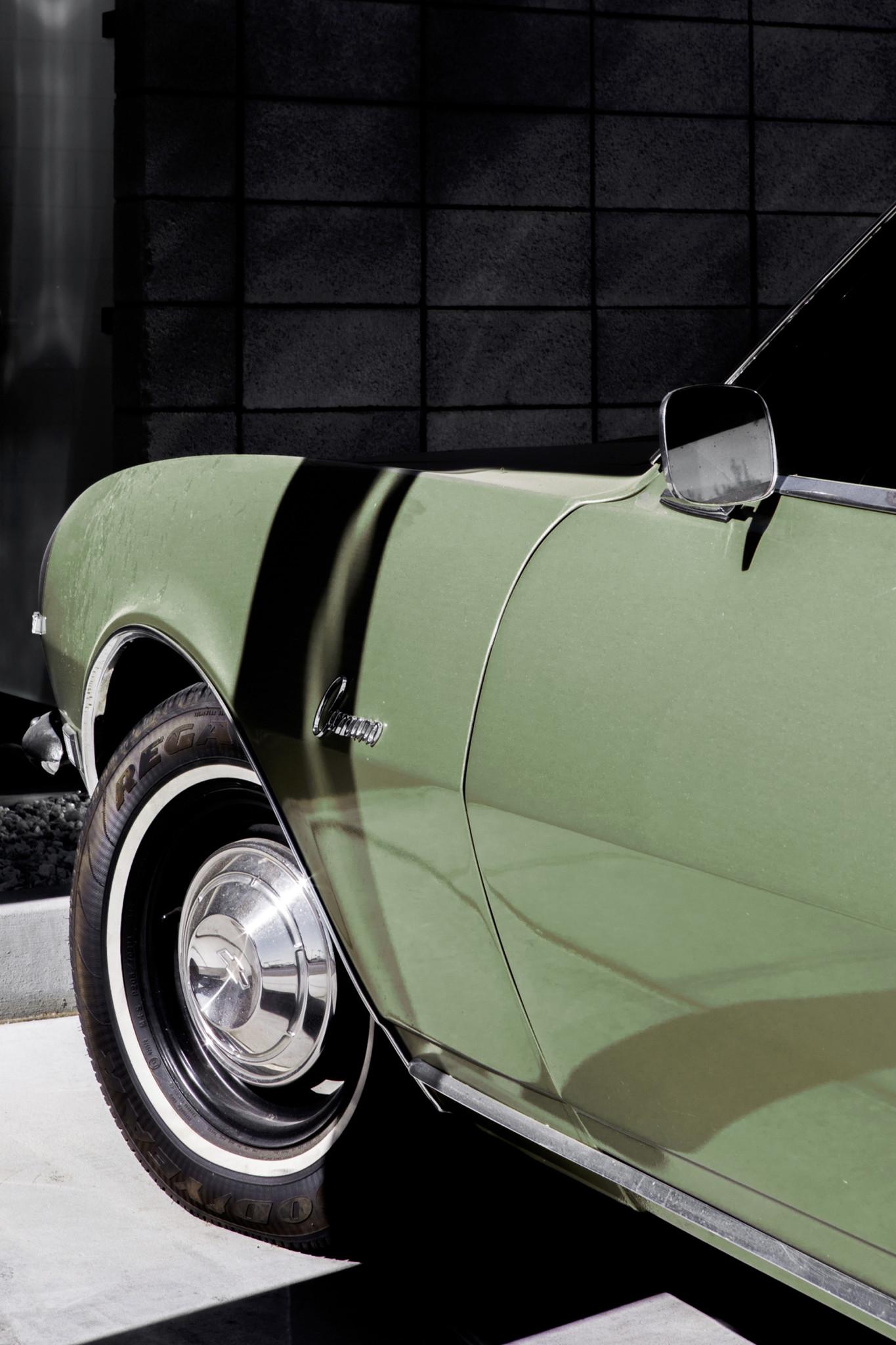 Green Cedar-7