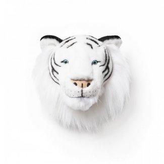 Wild & Soft Wild & Soft Albert the white tiger