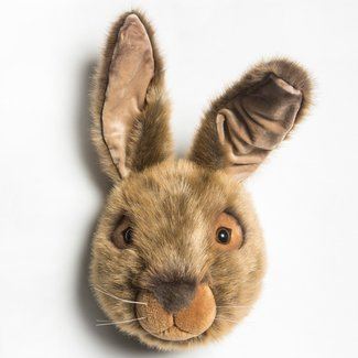 Wild & Soft Wild & Soft Lewis the hare