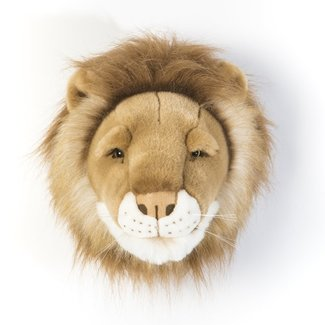 Wild & Soft Wild & Soft Cécar the lion