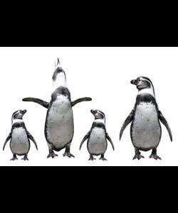 Alu Brush   Familie Pinguins 80 x 120