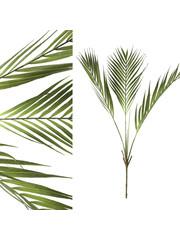 PTMD Palm kunstplant groen