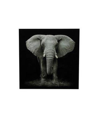 Countryfield Schilderij olifant Wild life L