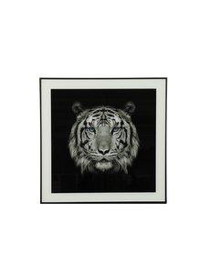 Countryfield Schilderij tijger blue eyes Wild life S