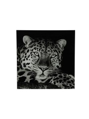 Countryfield Schilderij luipaard A Wild life L