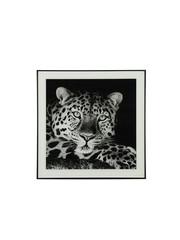 Countryfield Schilderij luipaard A Wild life S