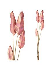 PTMD Paradijsvogel plant roze/goud gespoten