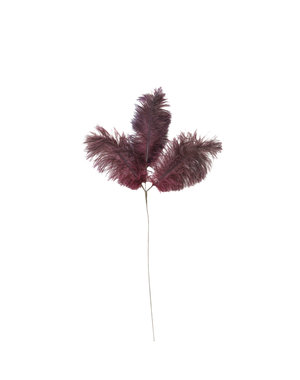 Light & Living Ornament 3 veren 61 cm FEATHER donker rood-paars