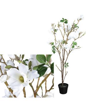 PTMD Kunstboom Magnolia wit in zwarte pot