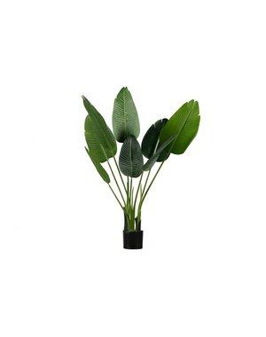 Strelitzia kunstplant groen 108 of 164 cm