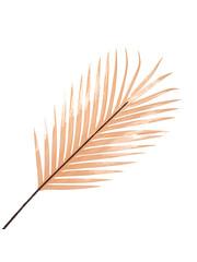Richmond Interiors  Kunsttak Gras Palm Honey