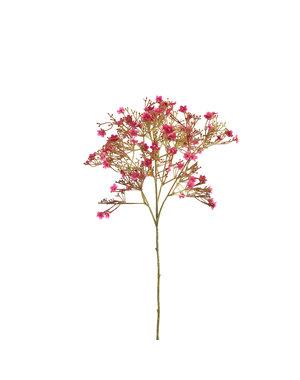 PTMD Garden Flower fuchsia sterrenbloem tak