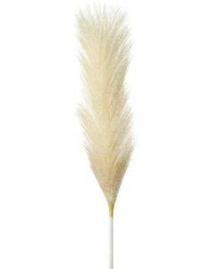 Parlane Veer gras ivoor / blush 72 cm