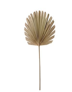 Ornament 44x103 cm PLANTAE naturel