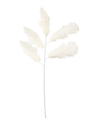 Light & Living Ornament 5 veren 129 cm FEATHER crème