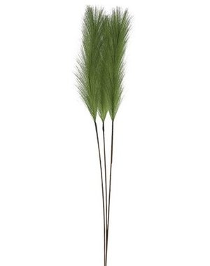 Countryfield Pluim gras groen