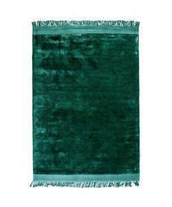 Vloerkleed Peshi 160x230 cm - groen