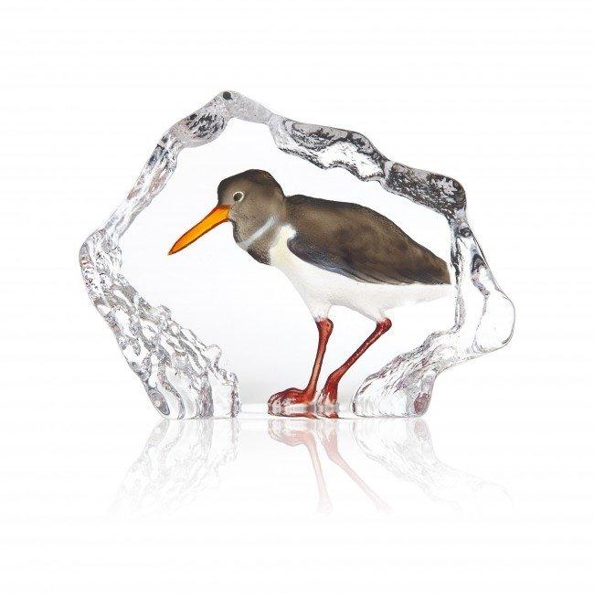 Mats Jonasson (Glaskunstenaar) Mats Jonasson scholekster