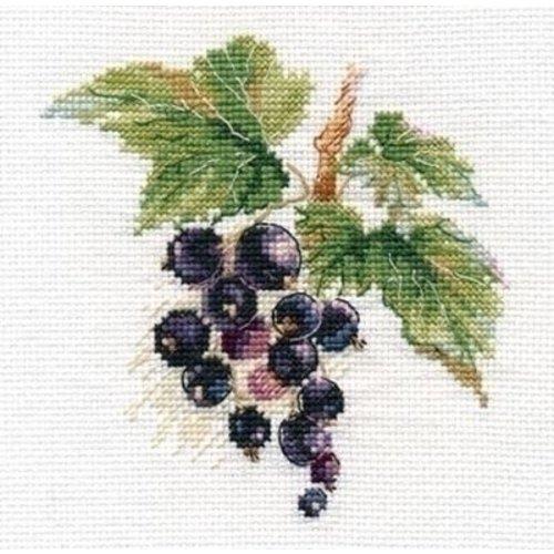 Alisa Alisa borduurpakket Blackcurrant al-00-141