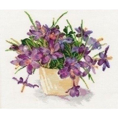 Alisa Alisa Blooming garden Crocuses 02-026