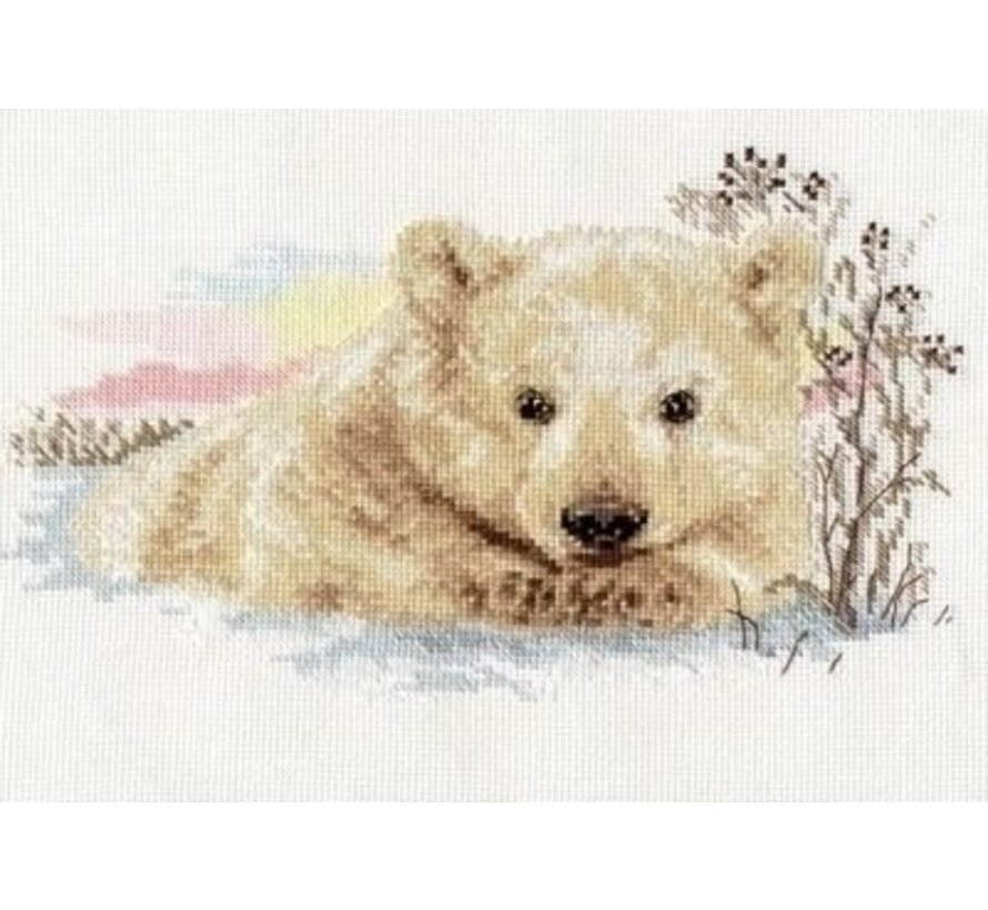 Alisa Northern Bear cub 01-019