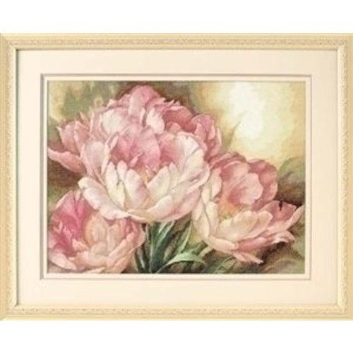 Dimensions Dimensions Tulpen, Tulip Trio 35175