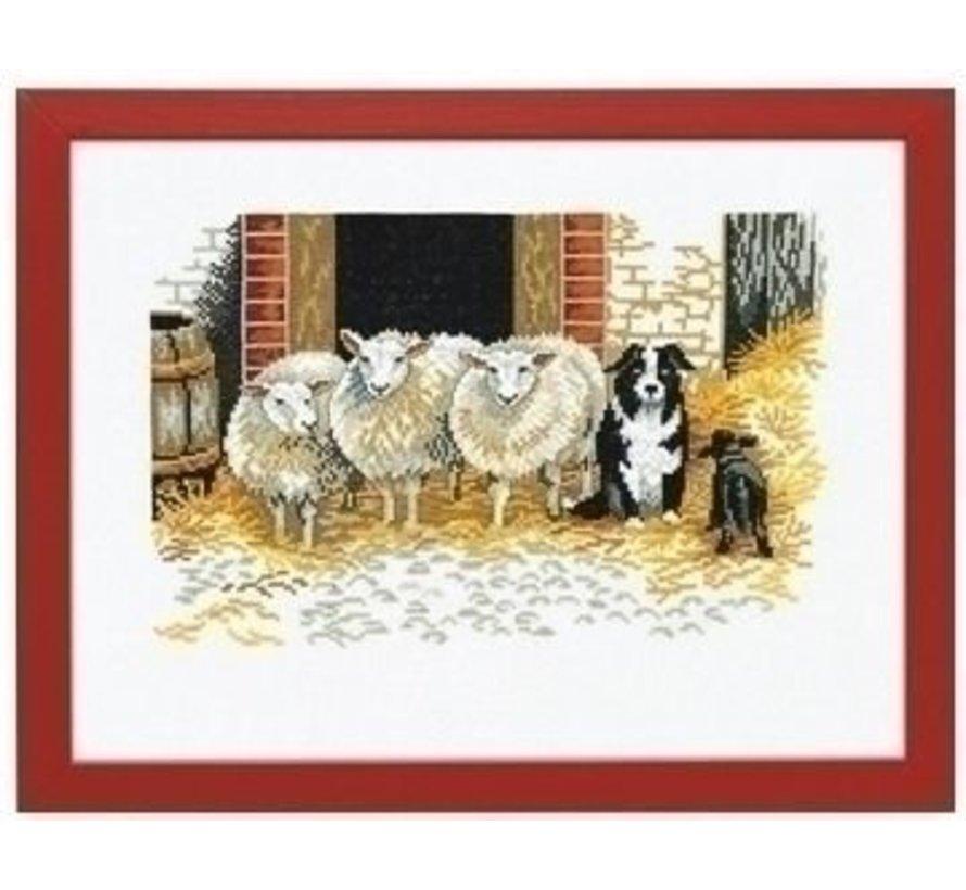 Eva Rosenstand Sheep and dog 94-107