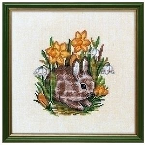 Eva Rosenstand Eva Rosenstand Young hare 12-889