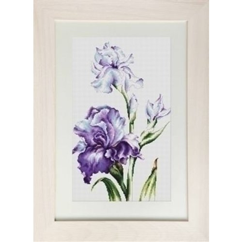 Luca S Luca S borduurpakket Irises B2251
