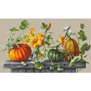 Luca S Luca S borduurpakket Pumpkins B2303