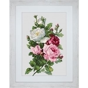Luca S Luca S Bouquet of Roses B2285