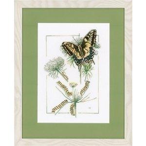 Marjolein Bastin Borduurpakket Van rups tot vlinder 0021872